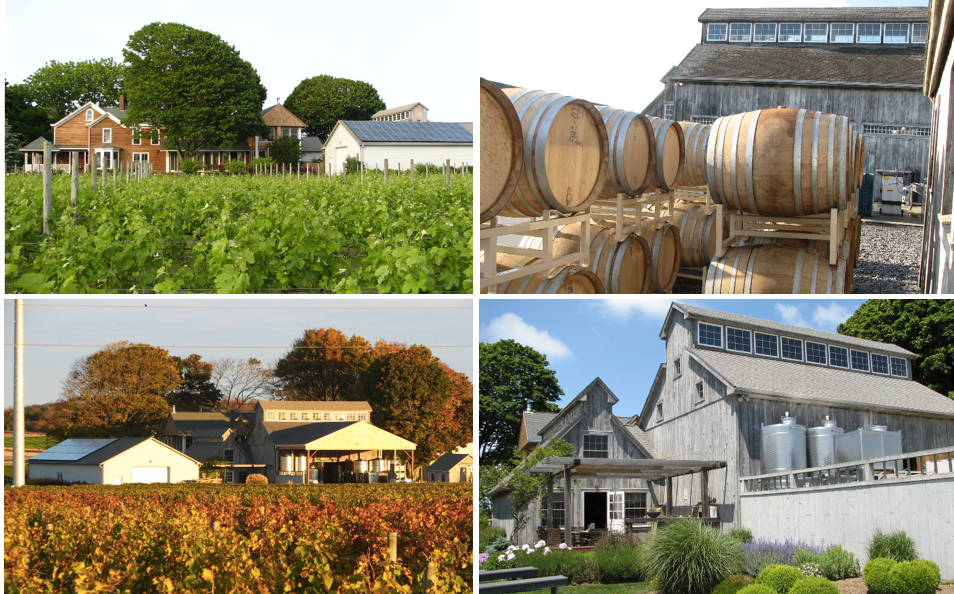 North Fork Wineries Long Island
