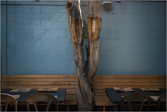Arts District Los Angeles Things To Do | Shop Eat Drink Video Neighborhood Guide | Umami Burger