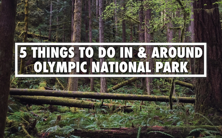 Things to do Olympic National Park