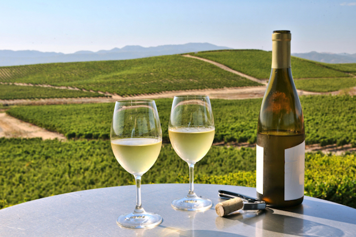 Napa Valley Vineyard Guide