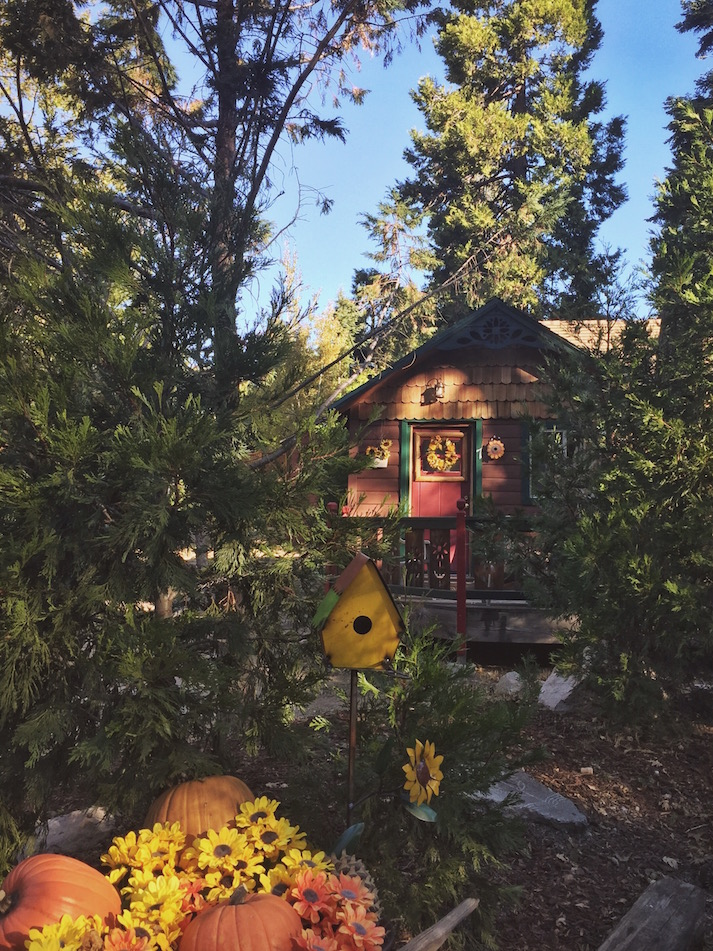 Pine Rose Cabins Lake Arrowhead